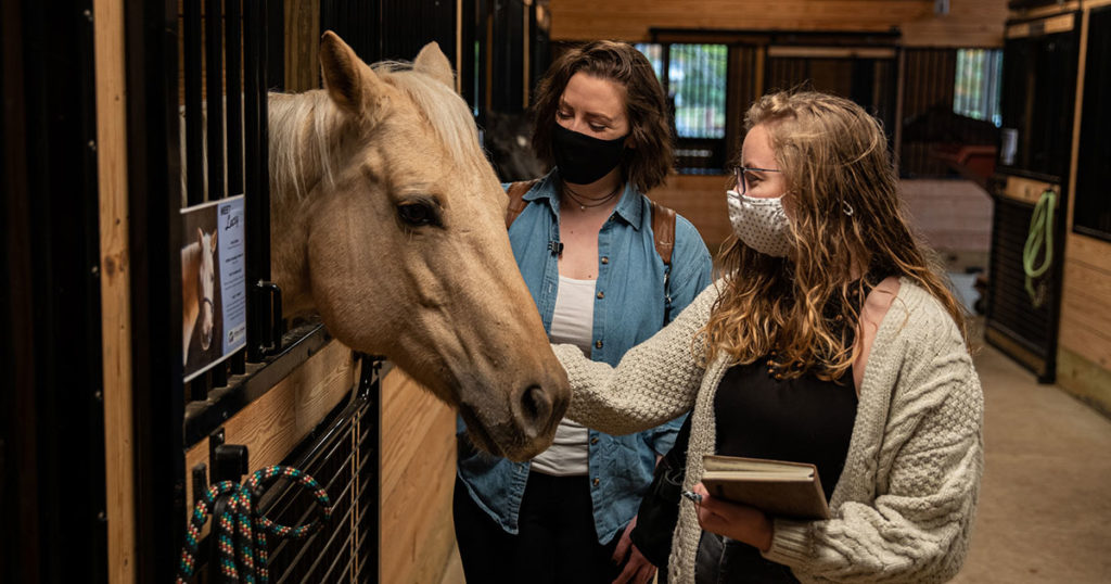 Interior design students petting a horse.