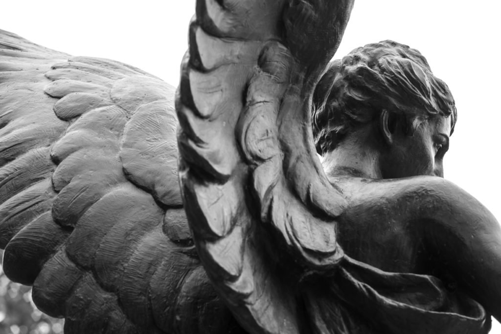 black and white photo of Benny's wings